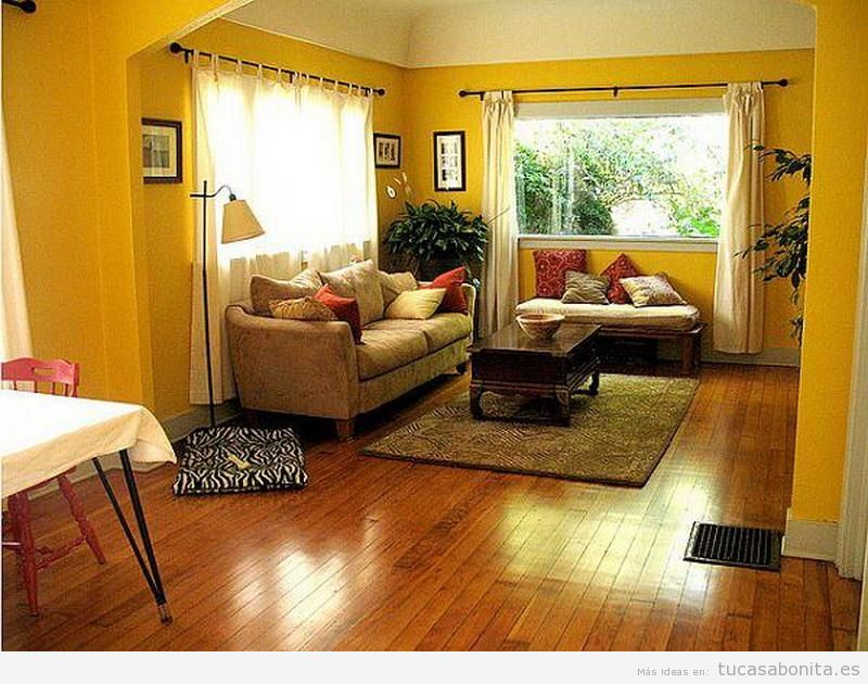 Paredes de salas de estar pintadas de colores 7