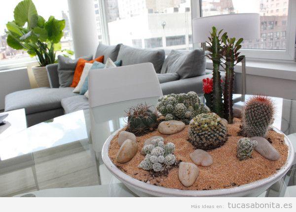 Decorar casa con cactus de interior