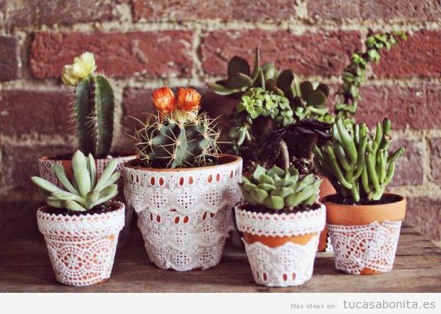 Decorar casa con cactus de interior - Tu casa Bonita