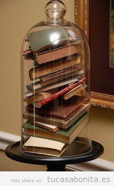 Libros dentro de una campana de cristal para decorar casa