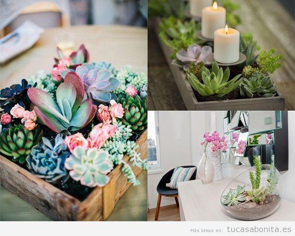 Decorar una casa con plantas suculentas como centro de mesa