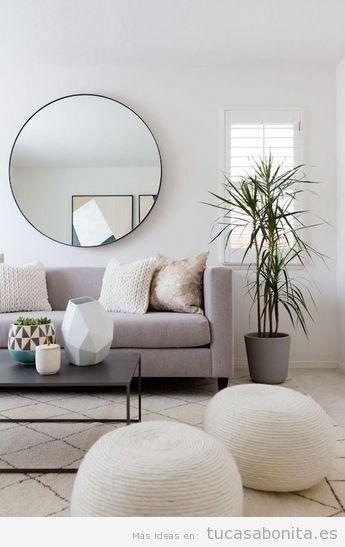 Decorar sala de estar minimalista con planta
