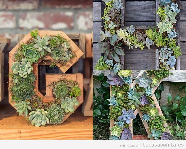Decorar una casa con letras formasas por plantas suculentas