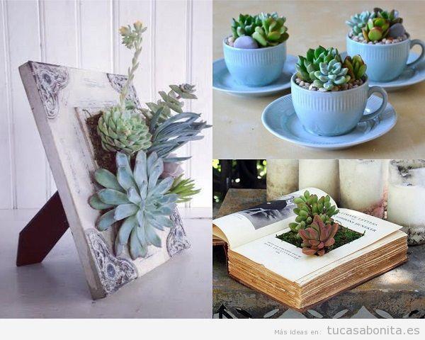 Decorar una casa con plantas suculentas colgantes en maceteros originales