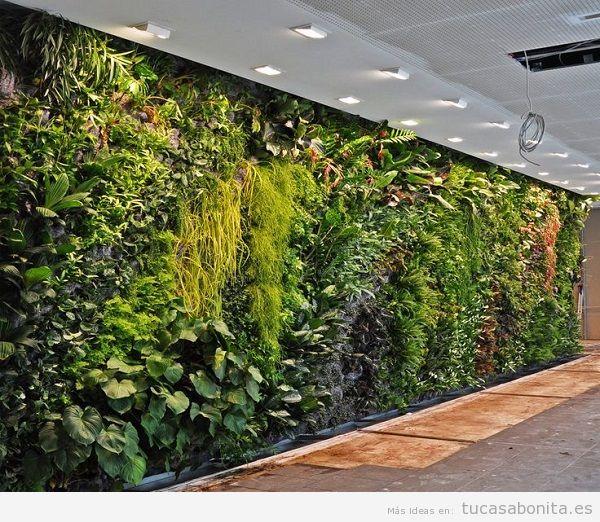 Jardiner a vertical belleza aislamiento y adecuaci n al for Jardin artificial interior