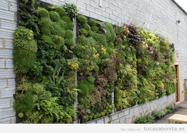 Jard n vertical tu casa bonita ideas para decorar for Jardin vertical exterior
