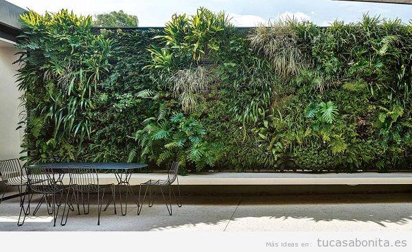 Jardín vertical en patio interior 2