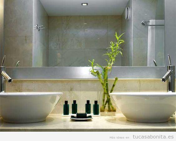 Plantas para el baño, bambú de la suerte