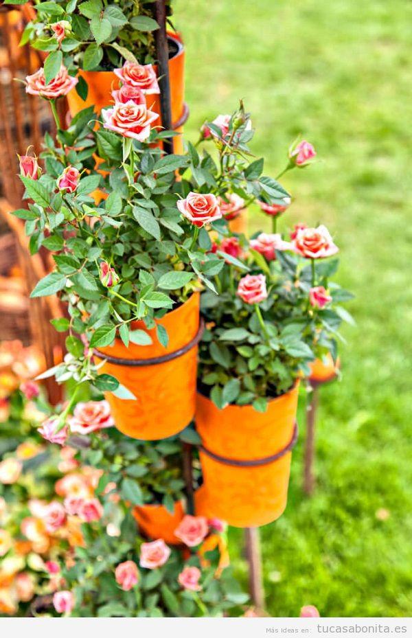 Jardín con rosas en casa 14