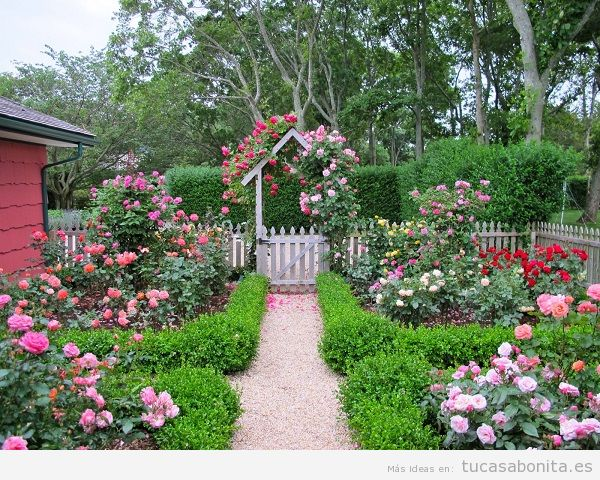 Jardín con rosas en casa 15