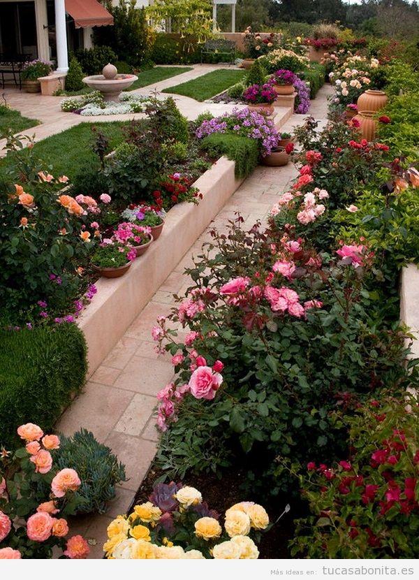 Jardín con rosas en casa