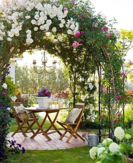 Un jardín con rosas