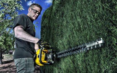 El cortasetos: ¿Cómo cortar los setos de tu jardín?
