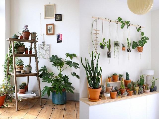 Decoración de sala de estar con macetas de terracota y cerámica 2