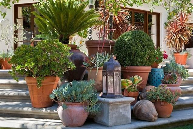 Decoración de jardines con macetas y tinajas 2