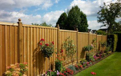 Renueva tu jardín y aprovéchalo al máximo esta primavera