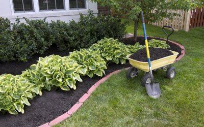 Cómo cuidar un jardín y tenerlo bonito en verano