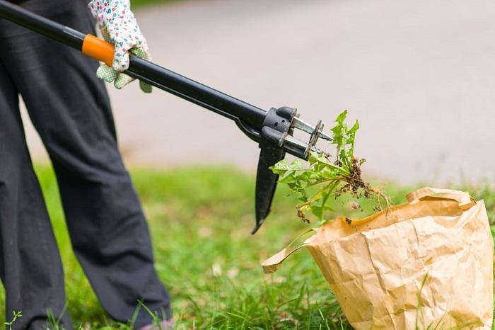 Herramienta para quitar las malas hierbas cómodamente
