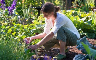 Los beneficios de trabajar en el jardín o huerto de tu casa