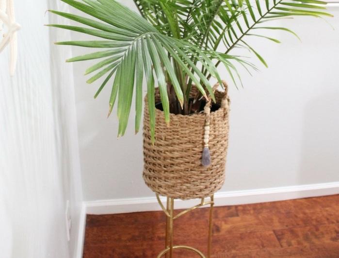 Consejos cuidar plantas de interior en verano, cubrir maceta