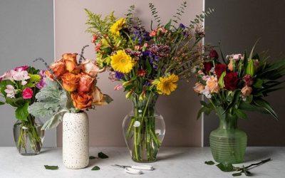 Las mejores flores para lucir en casa