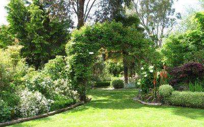 Herramientas que te ayudarán a tener un jardín cuidado y bonito