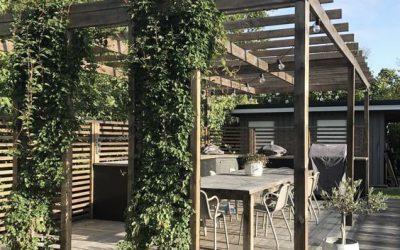 ¿Cómo elegir la pérgola para jardín perfecta?